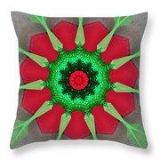 Kaleidoscope Mermaid Throw Pillow