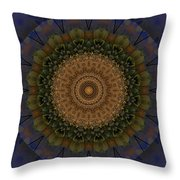 Kaleidoscope Vi Throw Pillow