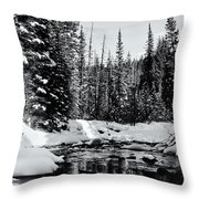 Kananaskis Creek Throw Pillow