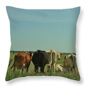 Kansas Cow's With There Backside's To You With Blue Sky And Grass Throw Pillow