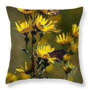 Kansas Monarchs Throw Pillow
