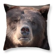 Keep Your Eye On The Camera Throw Pillow