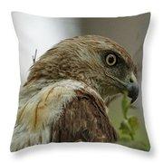 Keeping An Eye On You Throw Pillow