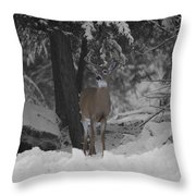 Keeping Guard Throw Pillow