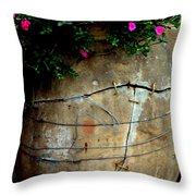 Keeping It All Together Throw Pillow