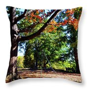 Kellifeer Park Throw Pillow