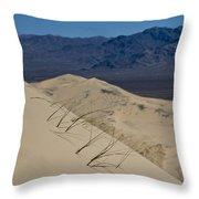 Kelso Dunes Grass Throw Pillow