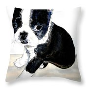 Kendall's Ajax Throw Pillow
