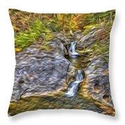 Kent Falls Throw Pillow