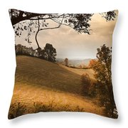 Kentucky Type Hayfields Throw Pillow