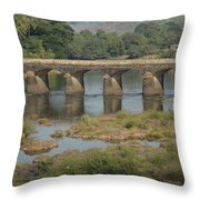 Kerala Beauty Throw Pillow