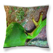 Kermit's Kuzin Throw Pillow