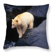 Kermode Bear On Boulder Hunting Salmon Throw Pillow