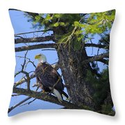 Kettle River Eagle 2012 Throw Pillow