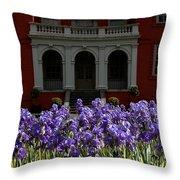 Kew Garden Irises Throw Pillow