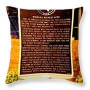 Kilgore Historical Marker Throw Pillow