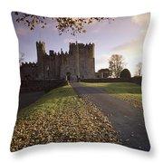 Kilkea Castle, Co Kildare, Ireland Road Throw Pillow