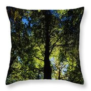 Killarney, Co Kerry, Ireland, Sunlight Throw Pillow