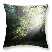 Killarney National Park, Co Kerry Throw Pillow