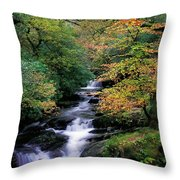 Killarney National Park, Ring Of Kerry Throw Pillow