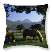 Killarney,co Kerry,irelandtwo Horses Throw Pillow