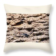 Killdeer Pitching A Fit Throw Pillow
