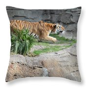 Killer Instinct Throw Pillow
