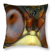 Killer Wasp Throw Pillow