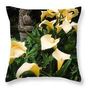 Kilmokea Country House And Gardens, Co Throw Pillow