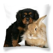 King Charles Spaniel And Rabbit Throw Pillow