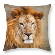 King Of Beasts Portrait Of A Lion Throw Pillow