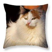 King Of The Backyard Throw Pillow