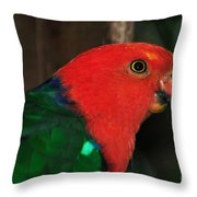 King Parrot - Male 2 Throw Pillow