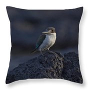 Kingfisher On The Rocks Throw Pillow