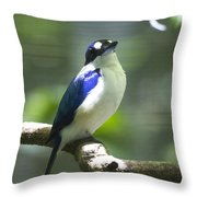 Kingfisher V2 Throw Pillow
