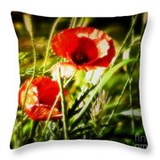 Kissed By The Setting Sun Throw Pillow