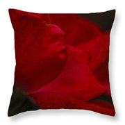 Kissed Throw Pillow