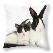 Kitten And Dutch Rabbit Throw Pillow