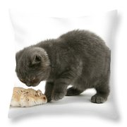 Kitten And Hamster Throw Pillow