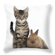 Kitten And Rabbit Throw Pillow