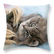 Kitten In Blanket Throw Pillow