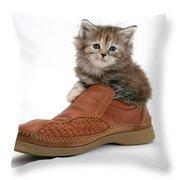 Kitten In Shoe Throw Pillow