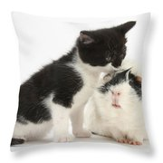 Kitten With Guinea Pig Throw Pillow