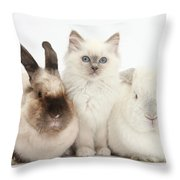 Kitten With Rabbits Throw Pillow