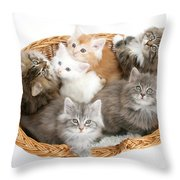 Kittens In Basket Throw Pillow