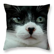 Kitty Closeup Throw Pillow
