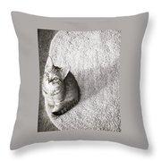 Kitty's Shadow Throw Pillow