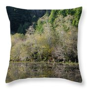 Klamath Pond Throw Pillow
