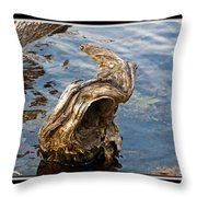 Knarled Stump In The Water Throw Pillow