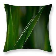 Knife Edge - Iris Throw Pillow